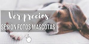 precios de sesion de fotos mascotas en Málaga